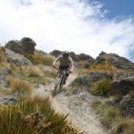 Downhill mountain biking, Dirt Park NZ, Queenstown